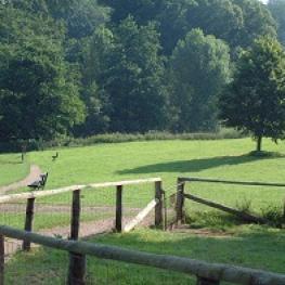 East Carlton Countryside Park